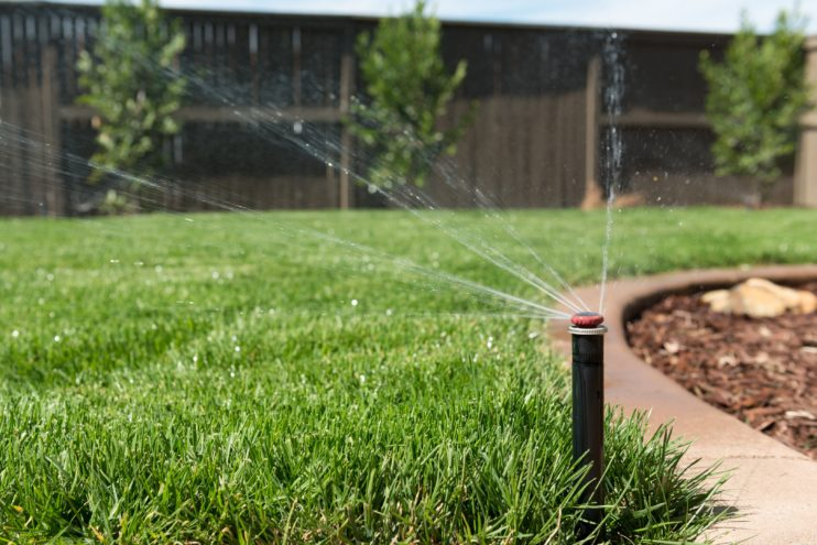 Lawn Sprinkler Spraying Water on Grass